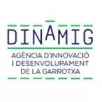 dinamig